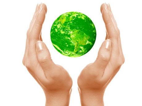 dinero medio ambiente