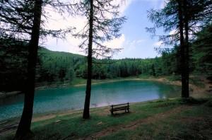 lago ninfa 300x198