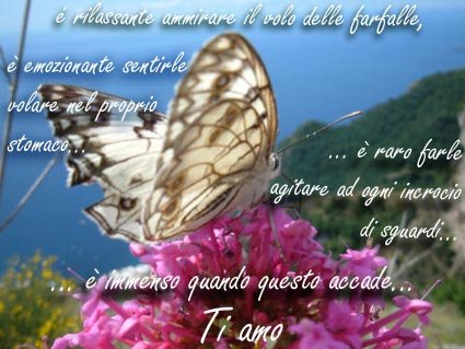 amore22