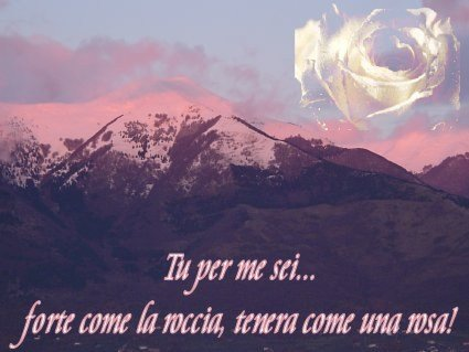 amore7