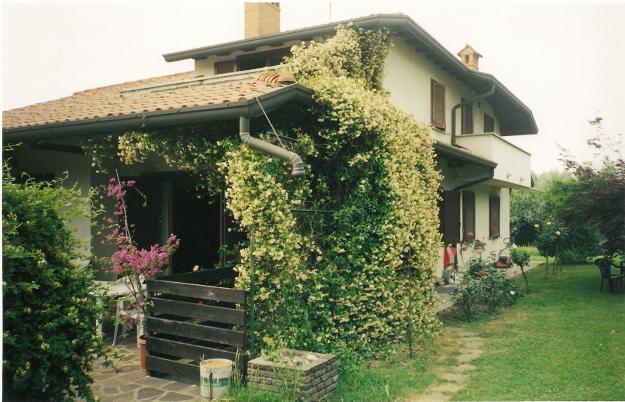 casa moderna con giardino circostante