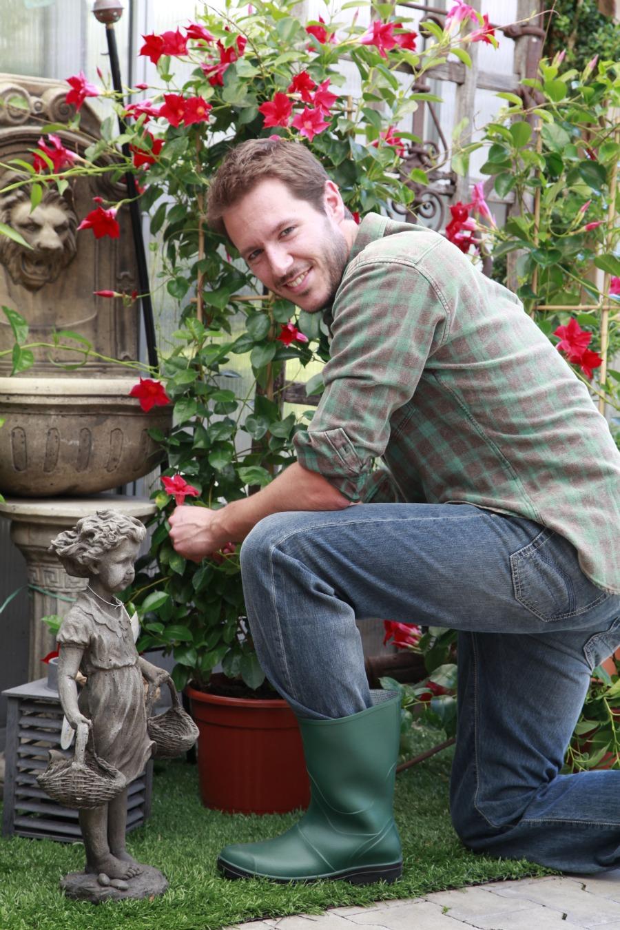 Giardino Zen Giardinieri In Affitto : Quot giardinieri in affitto nuova esilarante trasmissione