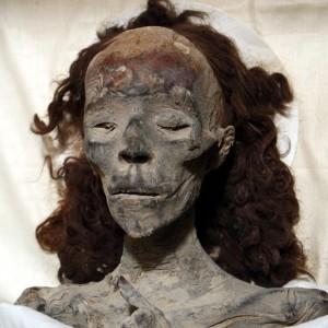 Testa mummificata della regina egizia Tiye