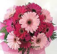Bouquet Sposa Gerbere.Idee Per Un Bouquet Da Sposa Con Le Gerbere Notizie It