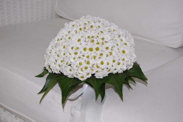 bouquet sposa con margherite