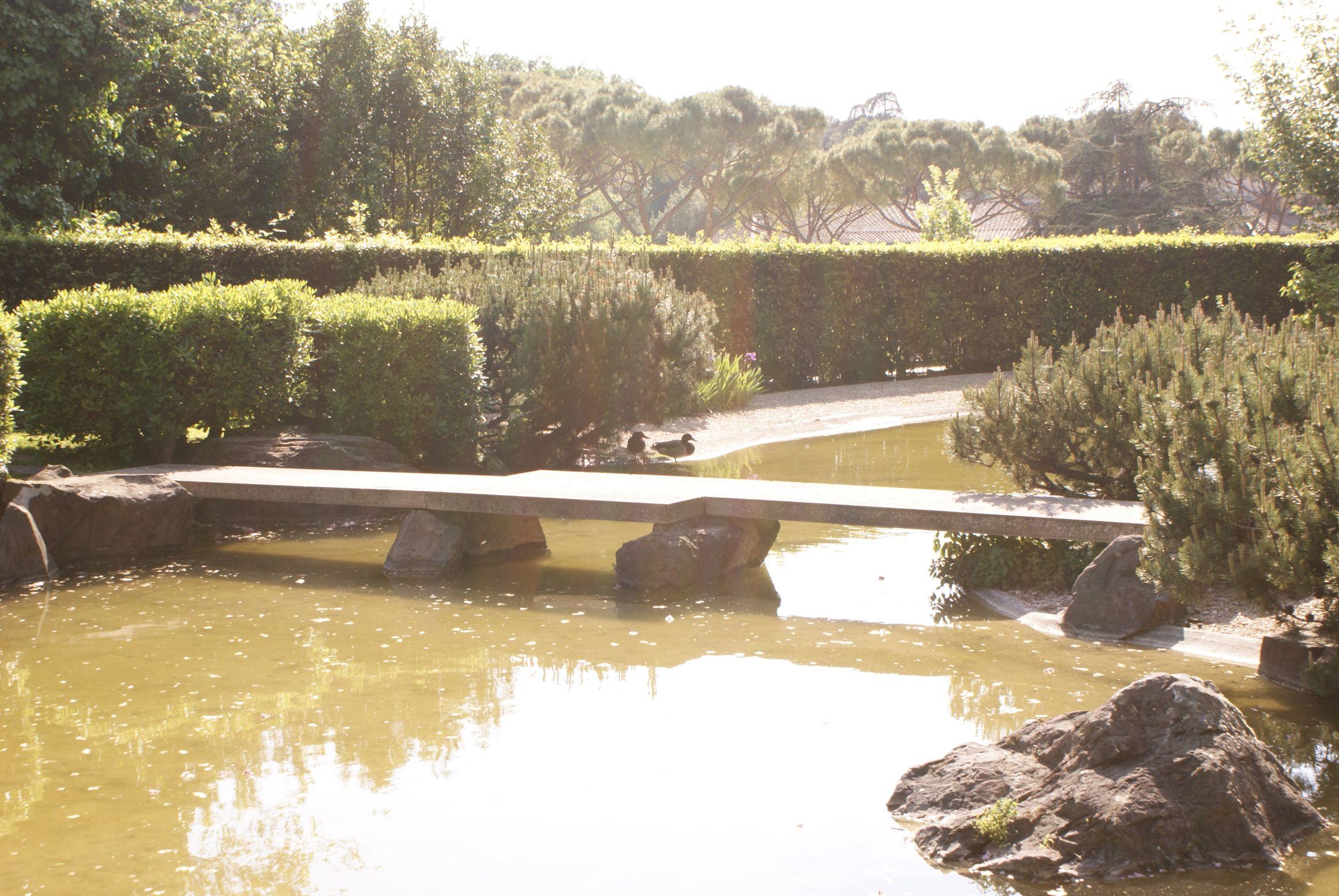 Giardini zen e l 39 universita 39 del bonsai il giappone in - Piccolo giardino giapponese ...