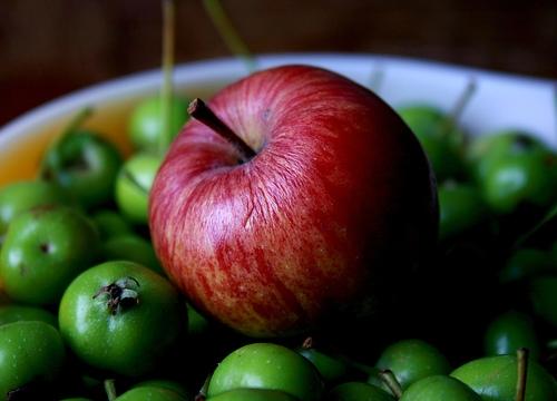 apple fruit information 800x800