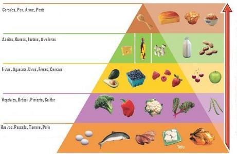 dieta atkins piramide