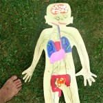 spleen disorders children 800x800 150x150