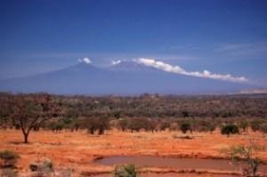 big KENYA Kuwinda Safari 714 300x199