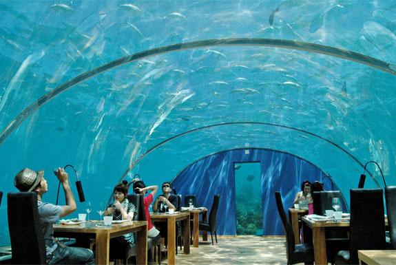 Ithaa Undersea: ristorante alle Maldive 5 metri sotto il livello del mare