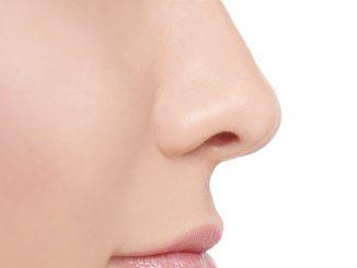 Croste al naso