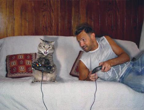 Gatto gioca con la playstation