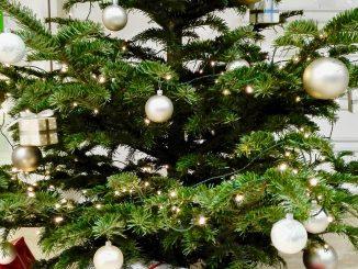 Gonna per l'albero di Natale