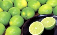 Lime 185x115