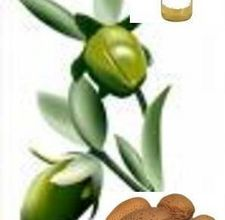 article page main ehow images a04 qa da important sweet almond oil 800x800