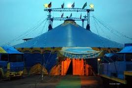 Tragedia al circo Nelly Orfei, trapezista cade nel vuoto, è grave