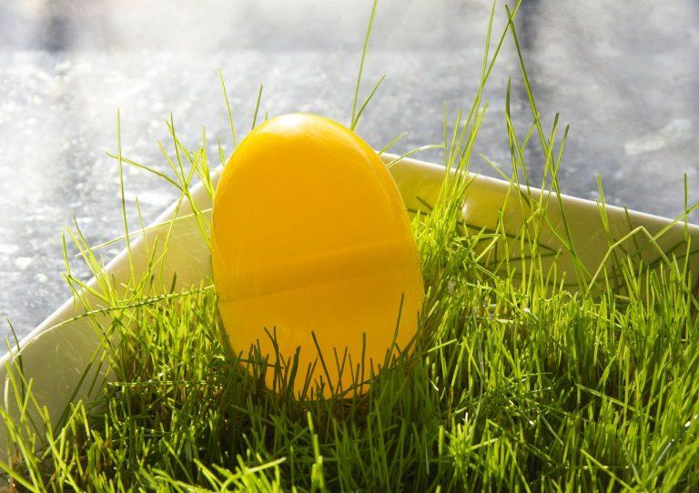 riciclare le uova
