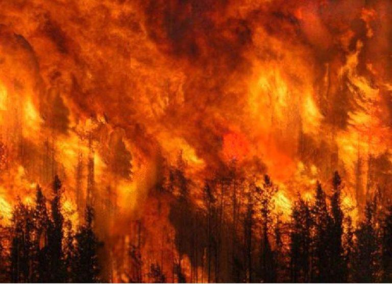 Incendio Curraggia
