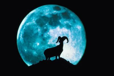 nasa lunar cycles - photo #38