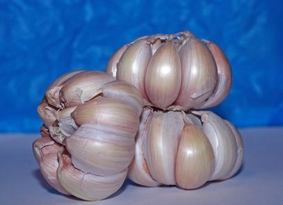 article new ehow images a07 3r r6 effects garlic shampoo 1.1 800x800