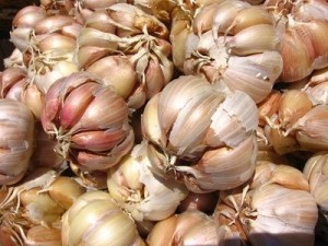 article new ehow images a07 gc jl side effects garlic capsules 800x800 300x225