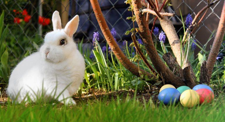 Come si festeggia la Pasqua inglese