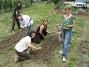 GardenTherapy5.12018 300x225