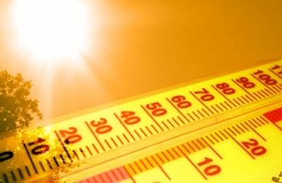 Heatwave 1311426550