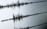 detail-sismografo