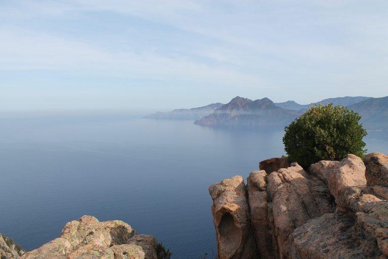 lingua ufficiale in Corsica