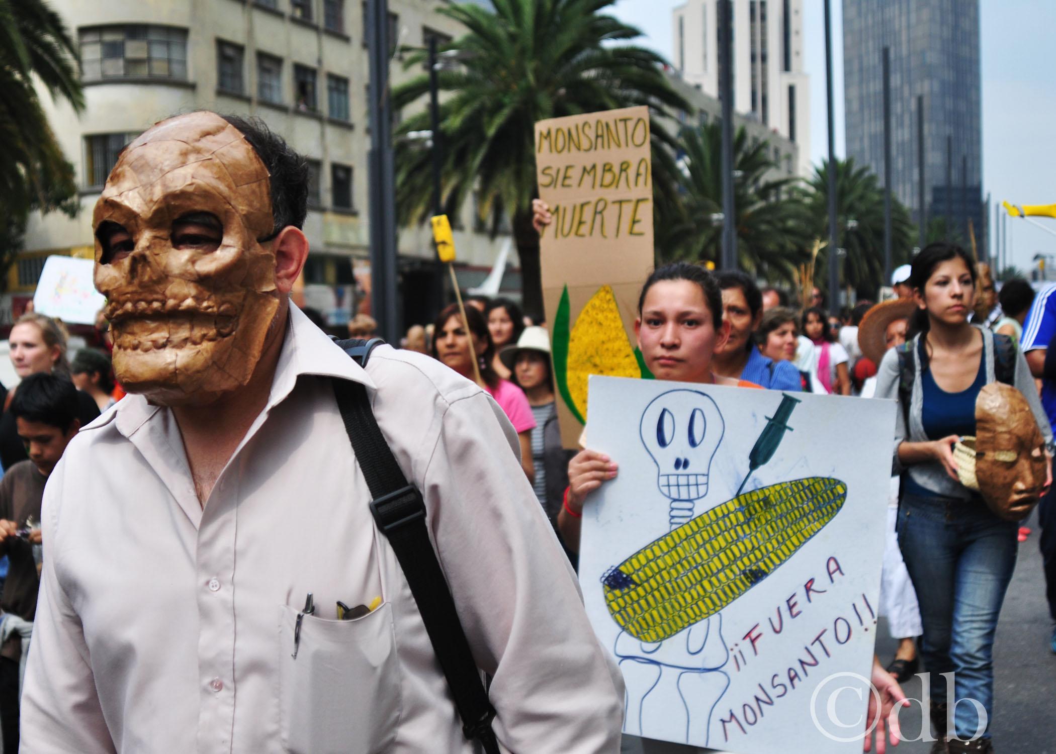 protesta contra monsanto bellas artes monumento a la revolucion debora poo 5