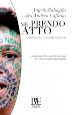 Ne-prendo-atto-di-Angelo-Zabaglio-250x400