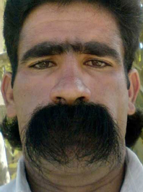 awful-mustaches-huge-bushy
