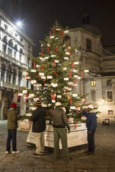 Venezia, l'albero dei migranti.