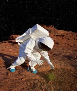 astronauta_pianta250