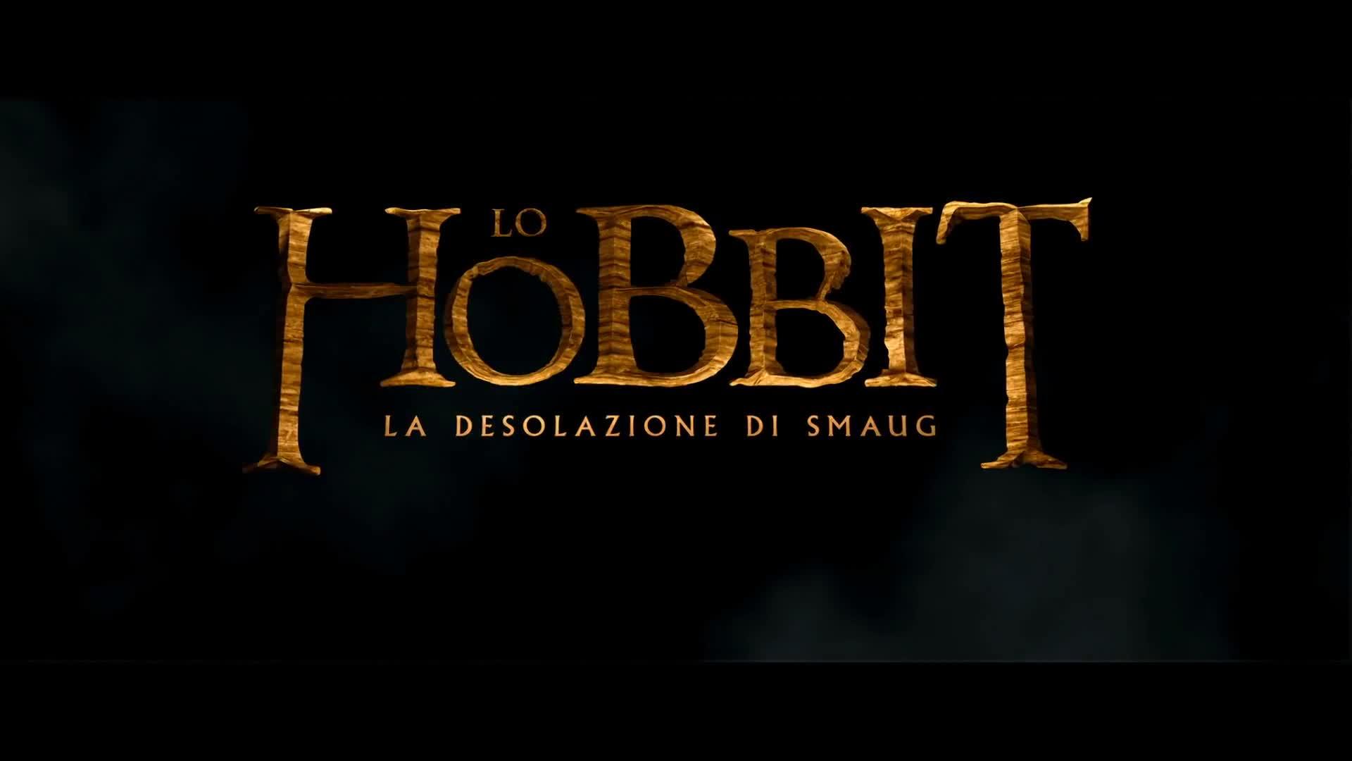 20130613161610Lo Hobbit 2