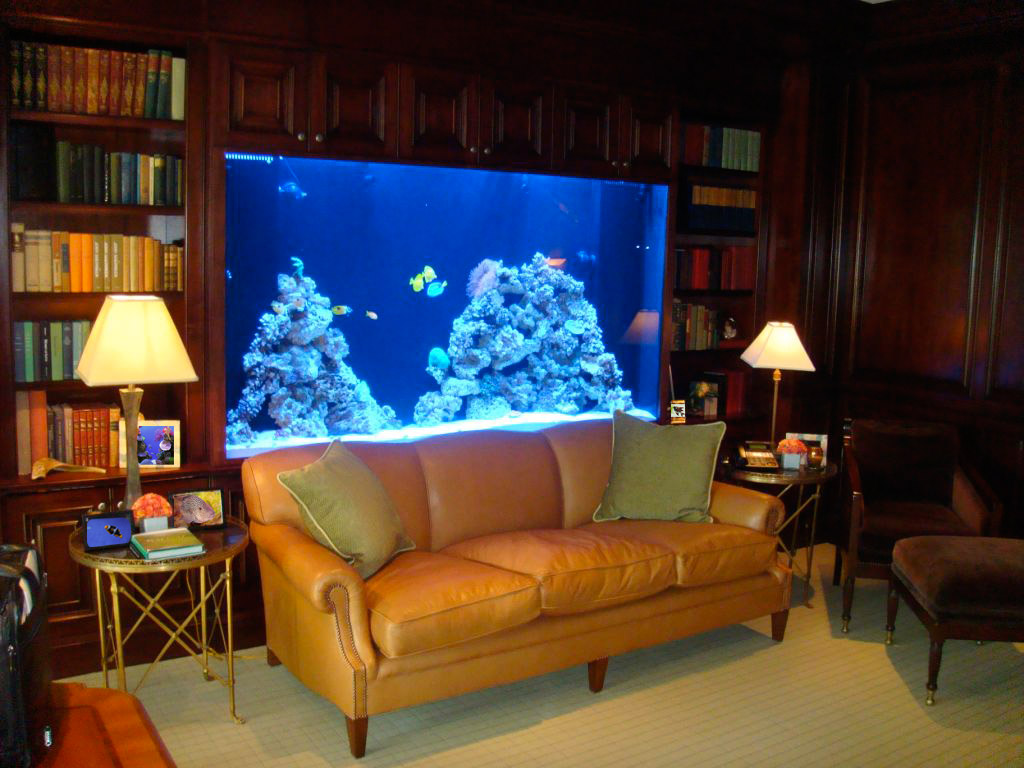 Elegant aquarium interior design 10 spettacolari acquari for Aquarium interior designs pictures