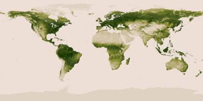 La mappa della vegetazione