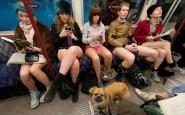 no-pants-subway-ride-2014-3