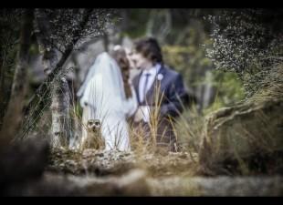 nozze-brutte-24