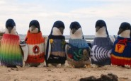 670x338xHipster-Penguins-1-990x500.jpg.pagespeed.ic.uPPq3rsjUa