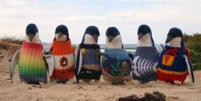 670x338xHipster-Penguins-1-990x500.jpg.pagespeed.ic.uPPq3rsjUa