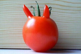 funny-shaped-vegetables-fruits-5