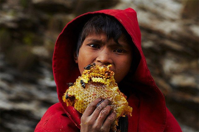 640x427xHoney-Hunters-of-Nepal3-640x427.jpg.pagespeed.ic.3gG505K5wy