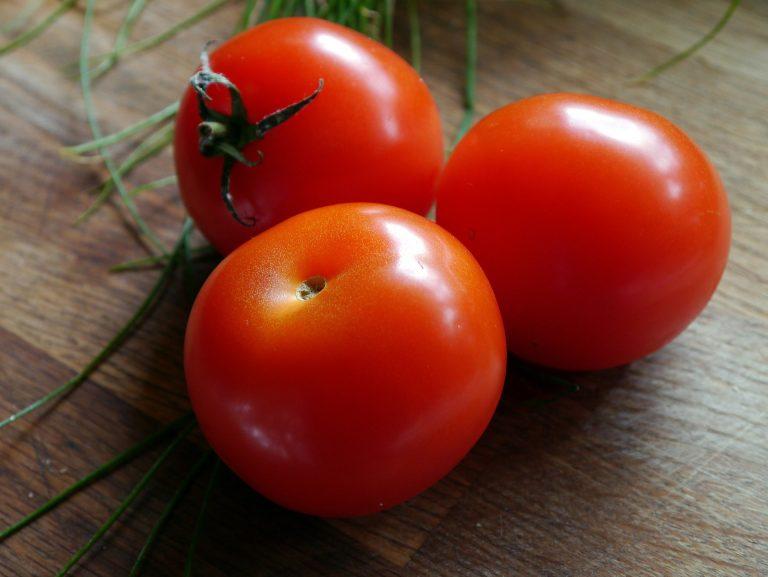 allergia al pomodoro