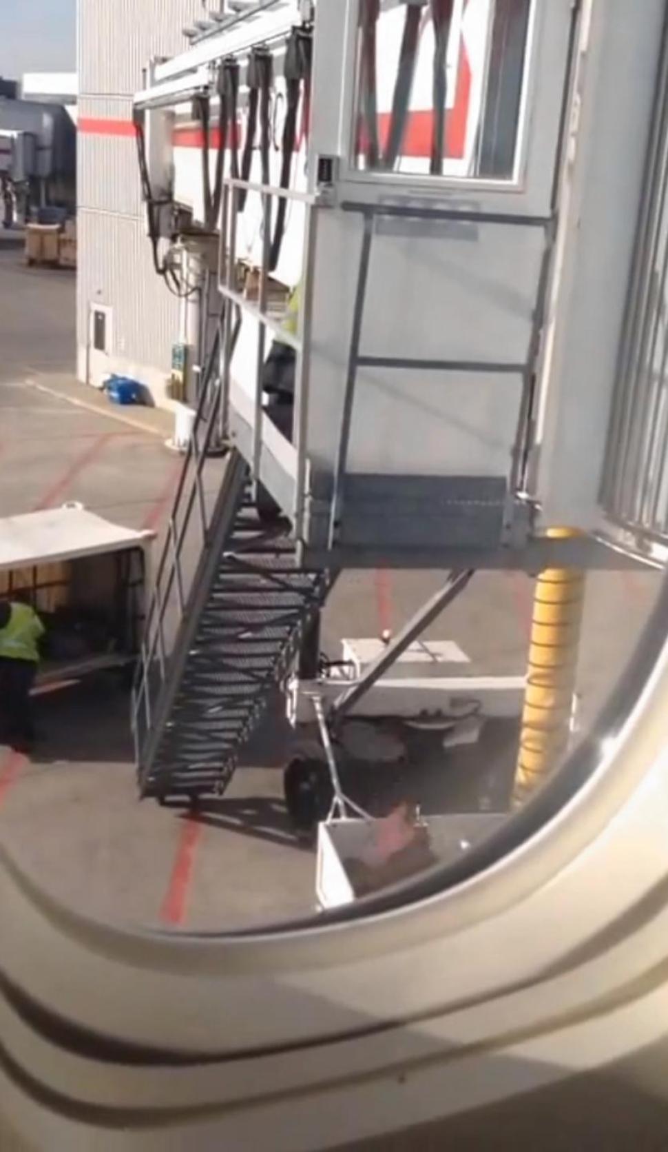 baggage22n-1-web