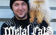 metal-cats-alexandra-crockett-11