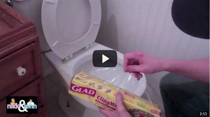 scherzo wc