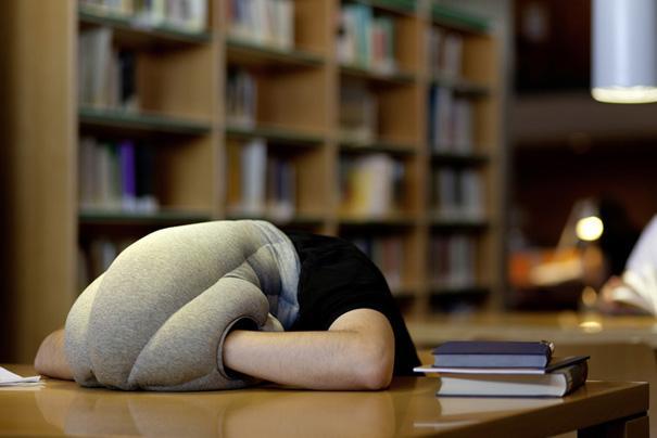 26-Ostrich-Pillow